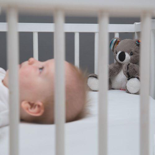 μαλακά κουκλάκια κοάλα zazu με συσκευές που αναπαράγουν το χτύπο της καρδιάς της μητέρας, (όπως ακούγεται σε ένα υπερηχογράφημα), λευκούς ήχους (οικείους στο μωρό μέσα απο τη μήτρα) και μελωδίες.